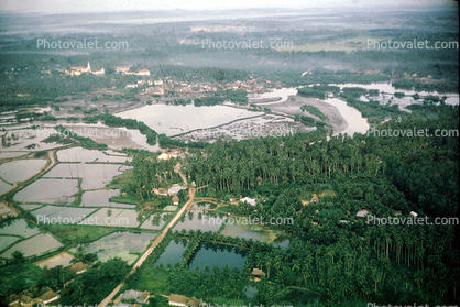 River, wetlands, rice paddies, forest, rainforest