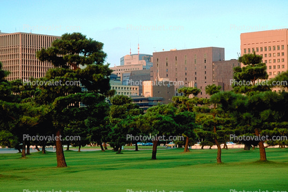 highrise buildings, cityscape, skyline, Tokyo