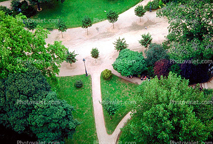 Park, Walkway, Path, triangle, trees