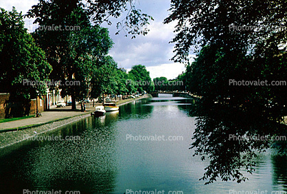 Water, Waterway, Canals, Trees, Amsterdam, 1950's