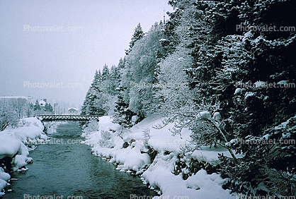 Bridge, River, Trees, Snow, Cold, Forest, Woodland, St. Moritz, Switzerland, 1950's