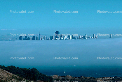 Fog, Cityscape, Skyline, Building, Skyscraper, Downtown