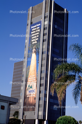 Save the Giant Sequoias, NRDC, 200 foot high banner by Wernher Krutein, Sunset Blvd., Hollywood, highrise building