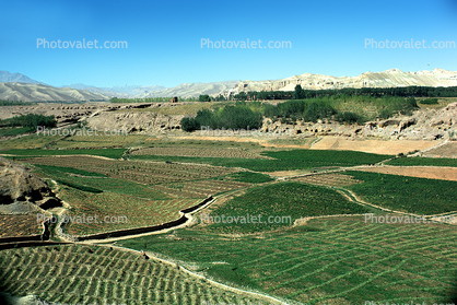 Afghanistan, Fields, Farming