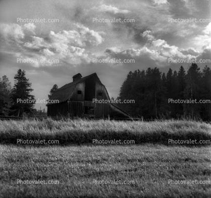 Barn, Hay, Snake River Ranch, clouds, trees