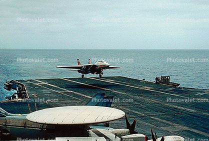Tomcat on Final, fantail, 100