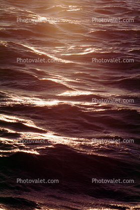 Water, Ocean, Waves, Wavelets, Pacific Ocean, Wet, Liquid, Seawater, Sea