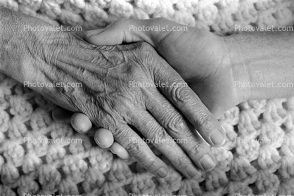 hand, help, female, woman, wrinkles