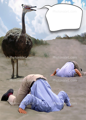 ostrich head buried in the sand bury your head in the sand businessman