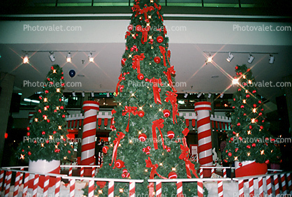 candy cane, Tree, Decorated, Decorations, presents, shopping mall