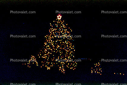 Christmas Tree Lights, decorated, decorations, outdoors, night, nighttime