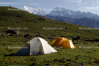 Tents, Mountains, Meadow