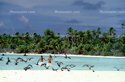 Tropical Beach, Man, Woman, Couple, Birds