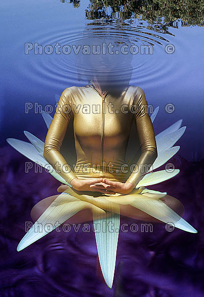 Lotus, Union of Yoga - The namesake of Yoga Poses, Pretzels-Yoga Studio, concentric rings
