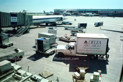 Delta Air Cargo Truck, Ground Equipment, Lots o' Planes, Terminals, Gates, Piers, Buildings