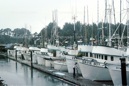 Docks harbor fort bragg mendocino county images for Fort bragg fishing charters