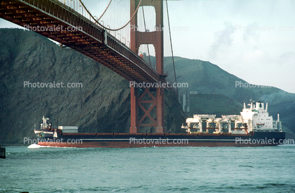 Beltimber, Cargo Ship, Golden Gate Bridge, IMO: 8324361