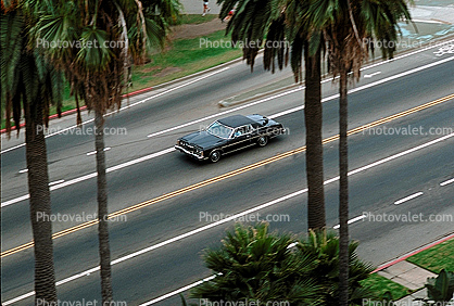 Ocean Blvd., Santa Monica, Car
