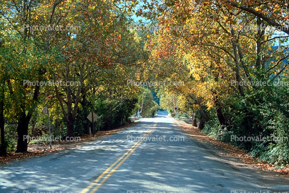 country road, Pleasanton