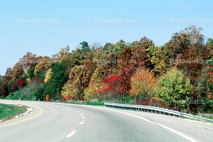 Road, Roadway, Highway 402, fall colors, trees, guardrail, curve, autumn