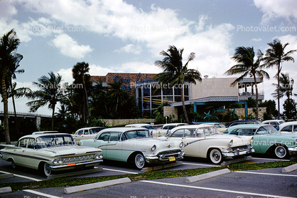 Parked Cars, Parking Lot, Chevy Impala, Oldsmobile, Ford, Chevrolet, Lakeland Florida, March 1960, 1960's