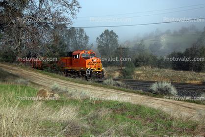 BNSF 4251 Diesel Engine sneaks into the frame, GE ES44AC