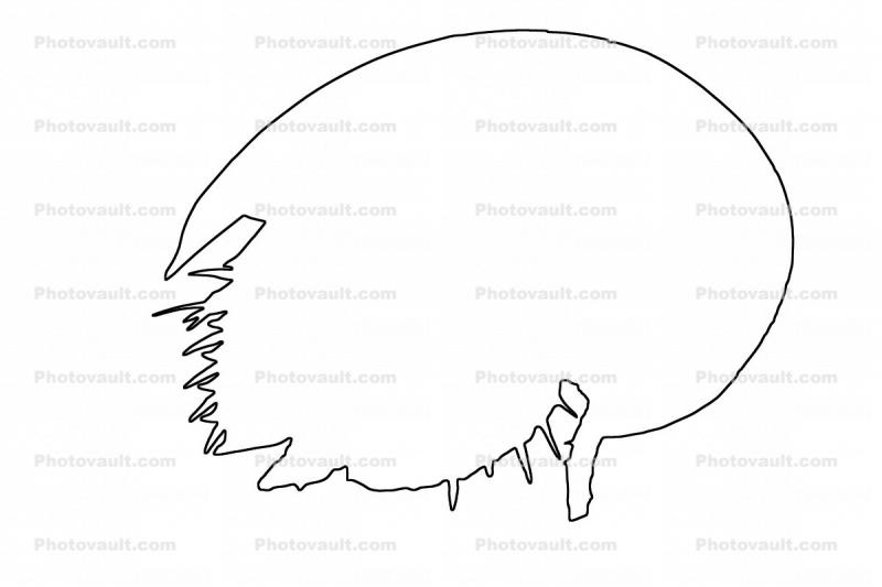 Horseshoe Crab outline, line drawing, shape