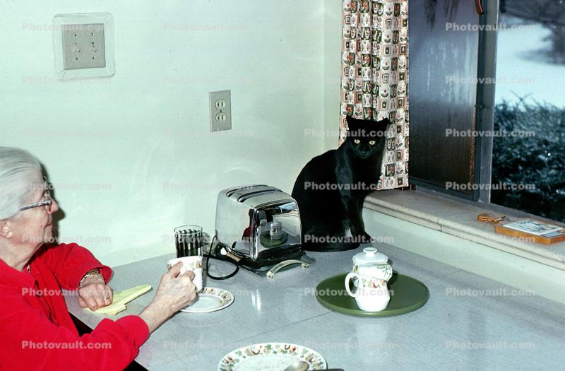 Toaster, Plates, Window, Black Cat, table, grandma, woman, little panther, 1960s