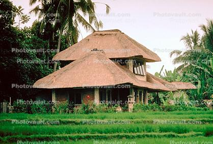Home, House, building, Grass thatched roof, Sod