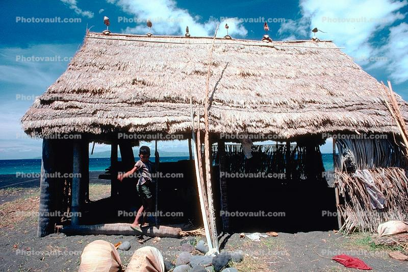 Grass thatched hut, building, roof, Sod