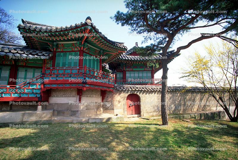 Pagoda, sacred place, building, tree, lawn