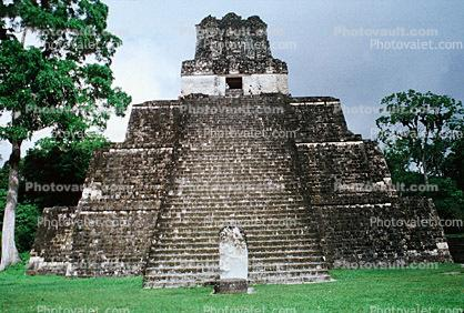 pyramid, Tikal National Park