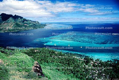 Harbor, boats, Opunohu Bay, Moorea