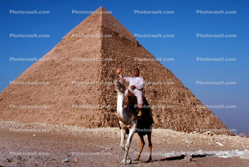 The Great Pyramid of Cheops, Camel, Giza