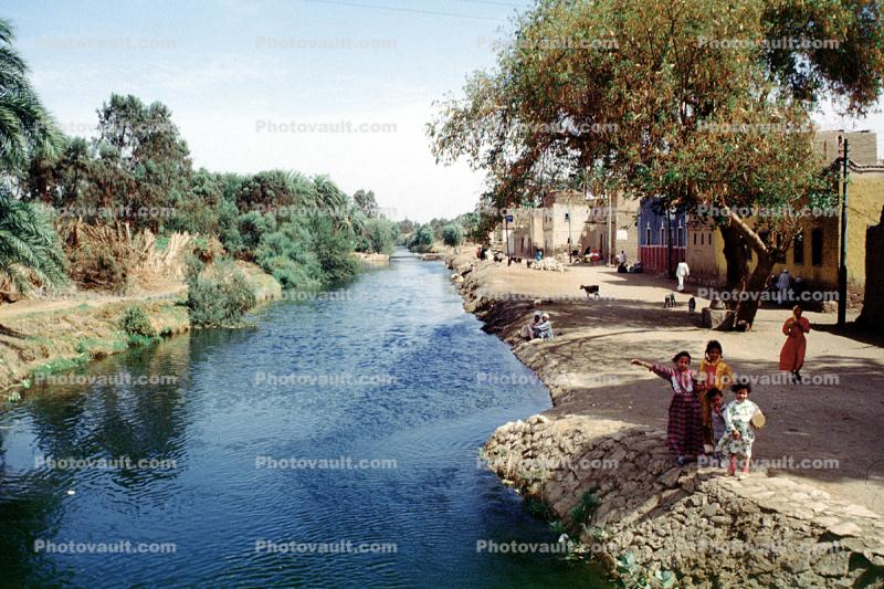 Aqueduct, Water, Irrigation, Nile River Valley, Trees, water, kids, children