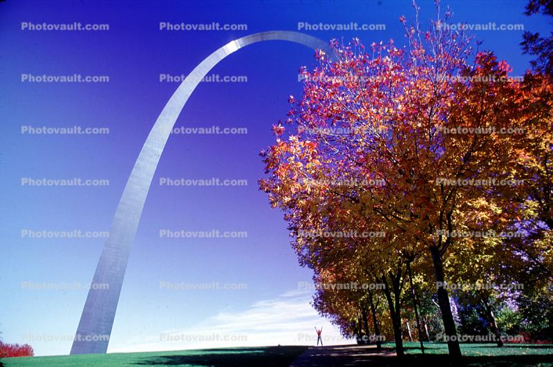 The Gateway Arch, tree, autumn