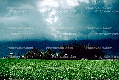 farm field, clouds