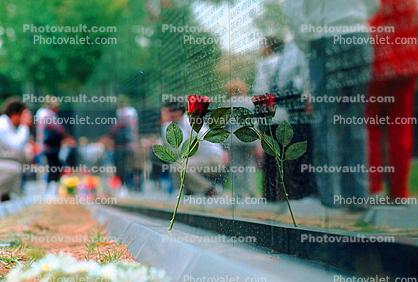 Reflecting Rose, Vietnam Veterans Memorial
