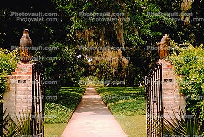 Gate, path, footpath, Brookgreen Gardens, May 1969, 1960s
