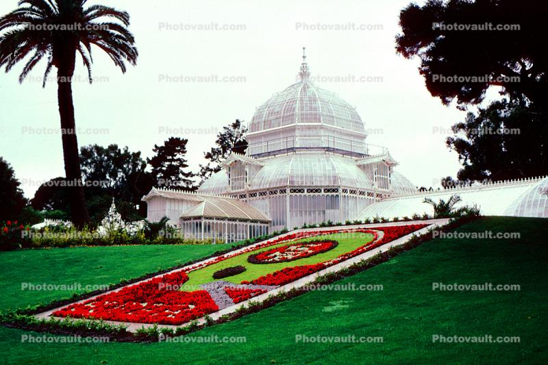 Conservatory Of Flowers, Super 49'rs, Helmet