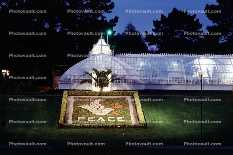 Peace, Conservatory Of Flowers, Equanimity