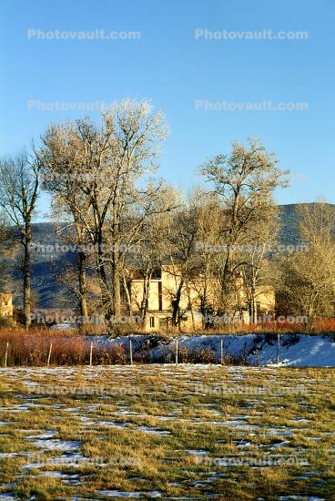 house, home, housing, Building, domestic, domicile, residency, trees, Sangre De Cristo Range