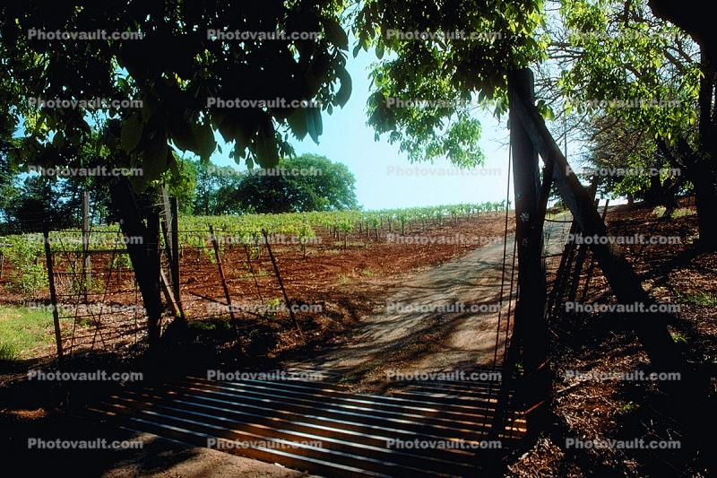 cattle guard, grate, Sonoma County