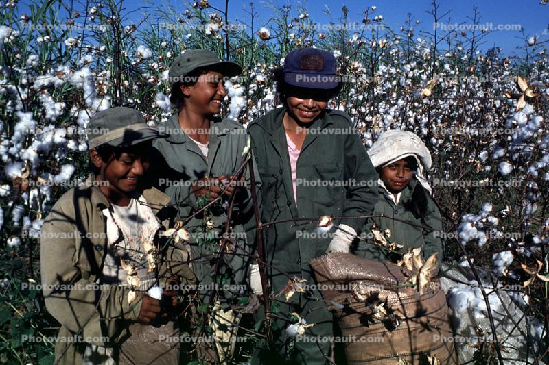 Smiling Boys, Picking Cotton, hats, labor, workers