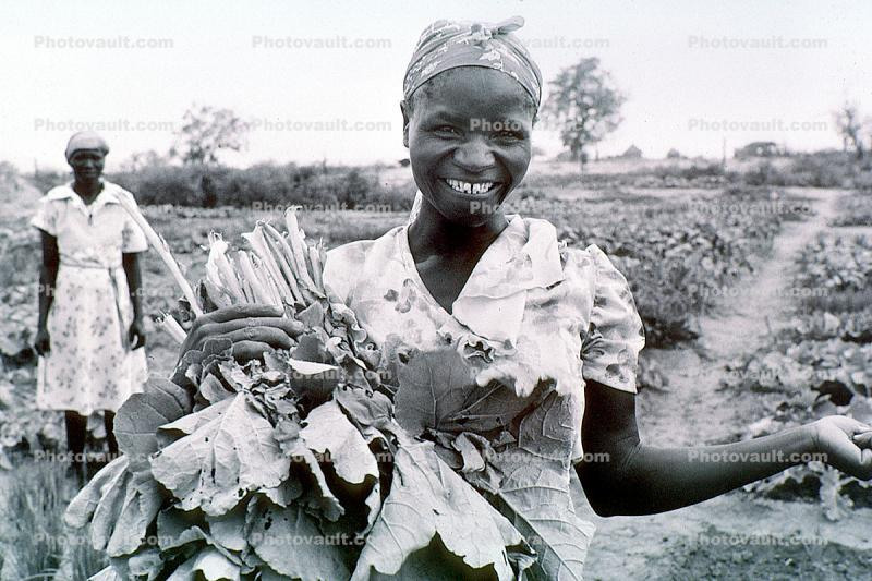Woman, Harvesting her Crops, Smiles