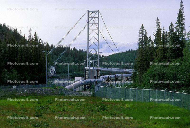 Delta Pipeline Suspension Bridge, Tanana River, Alyeska Pipeline Mile 275.4
