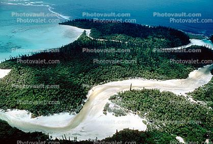 Coral, Island, Forest, Trees, Barrier Reef, Pacific Ocean, shore, shoreline, coast