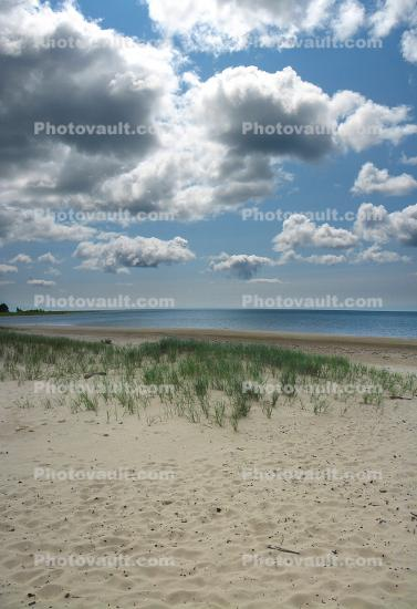Plants, cumulus clouds, Beach, Lake, Sand, Water, coastline, coastal