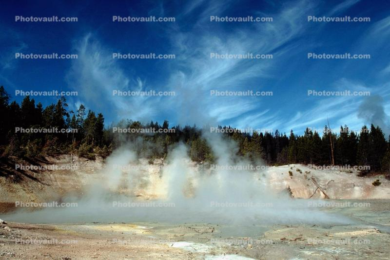 steam, trees, clouds, whispy cirrus, Hot Spring, Geothermal Feature, activity