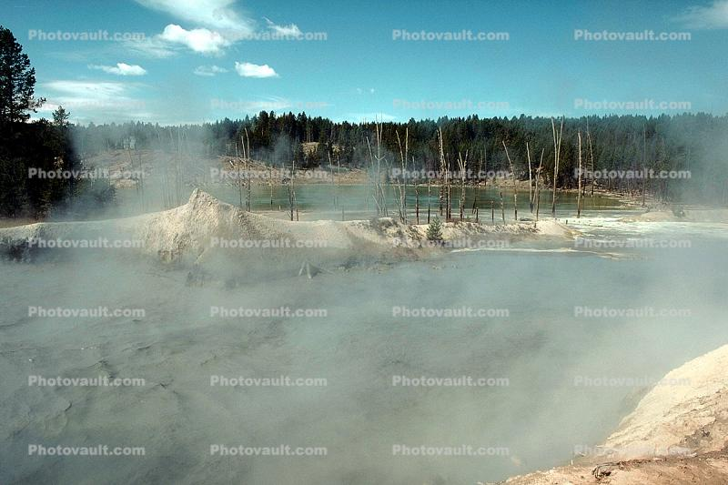 steam, trees, hills, Hot Spring, Geothermal Feature, activity